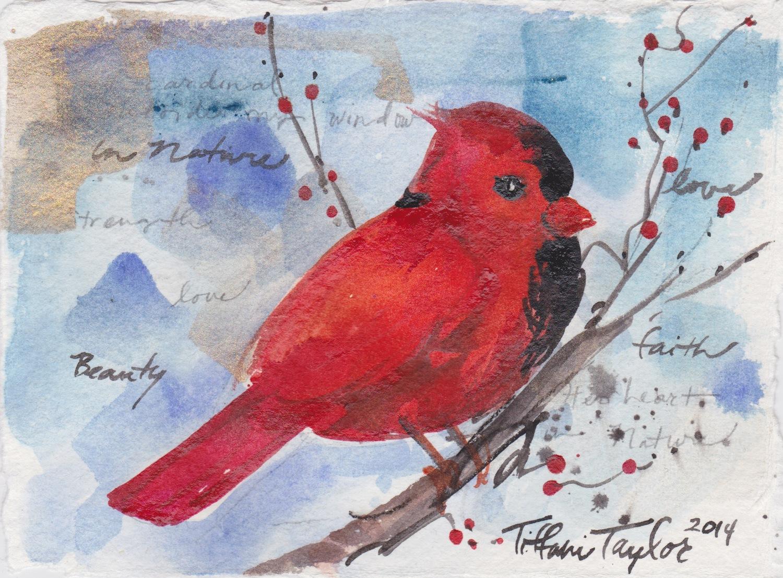 Cardinal: Outside My Window...