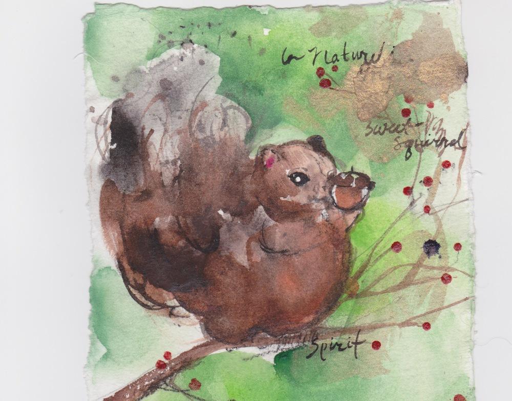 Squirrel: Sweet Spirit...love...beauty...