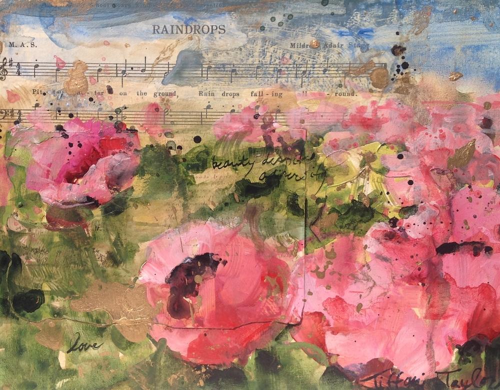 Pink Poppies:  Raindrops