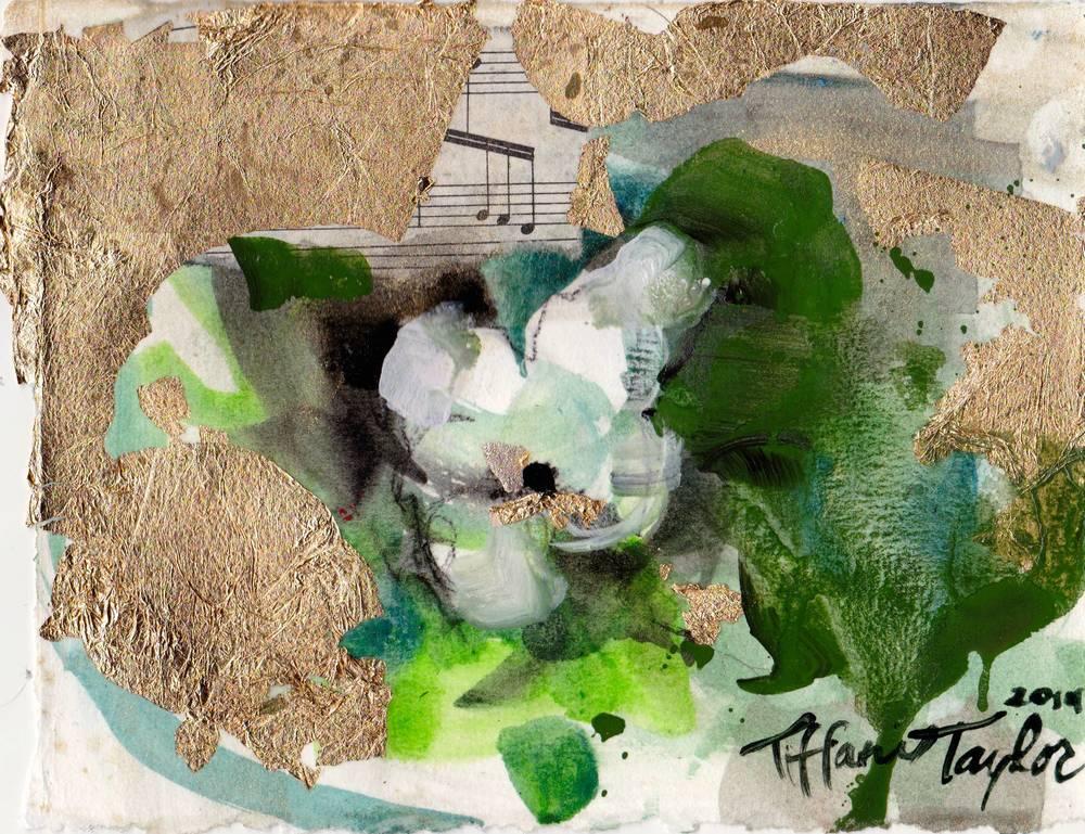 In the White Garden: First Bloom...