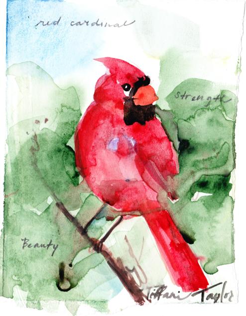 Red Cardinal:  Strength, Beauty...