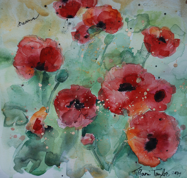 Dreams:  Red Poppies