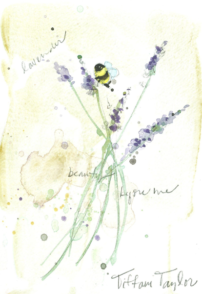 Lavender: Beauty Before Me