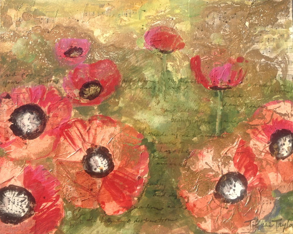 Red Poppy Blooms:  My Heart