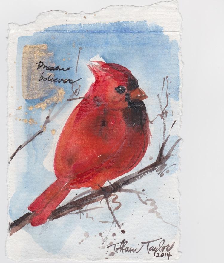 Red Cardinal:  Dream Believer
