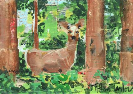 Deer Study:  In Nature