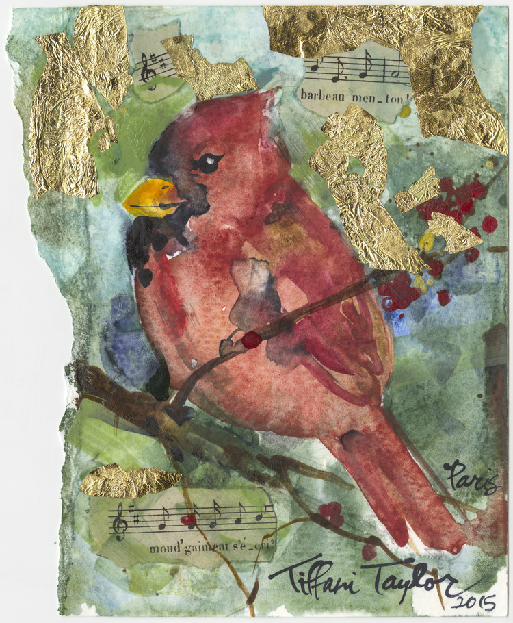 Cardinal: Savannah, Music...
