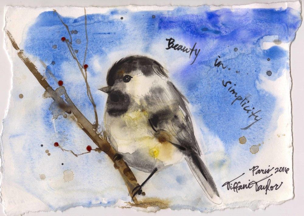 Chickadee: Beauty in Simplicity...
