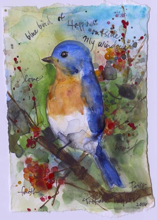 Bluebird of Happiness Outside My Window...