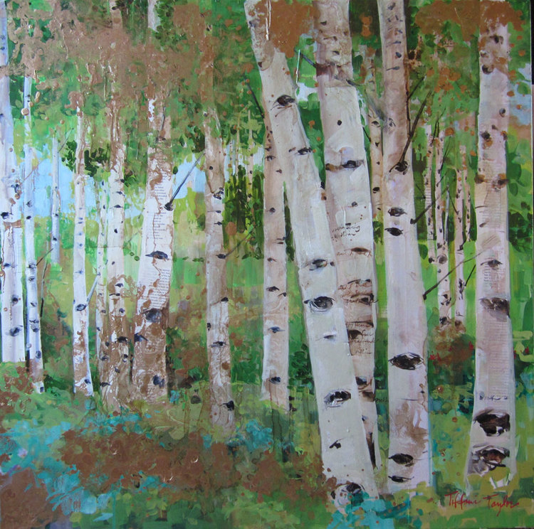 "Aspen Trees: At the Golden Hour 36"" x 36"""