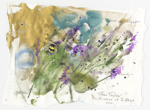 Bumble Bee: Love & Light 11x7.5