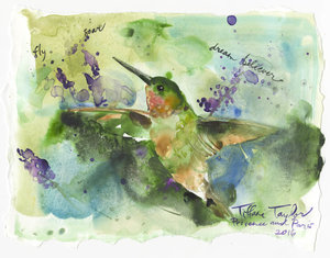 Hummingbird: Fly, Soar, Dream Believer 11x7.5
