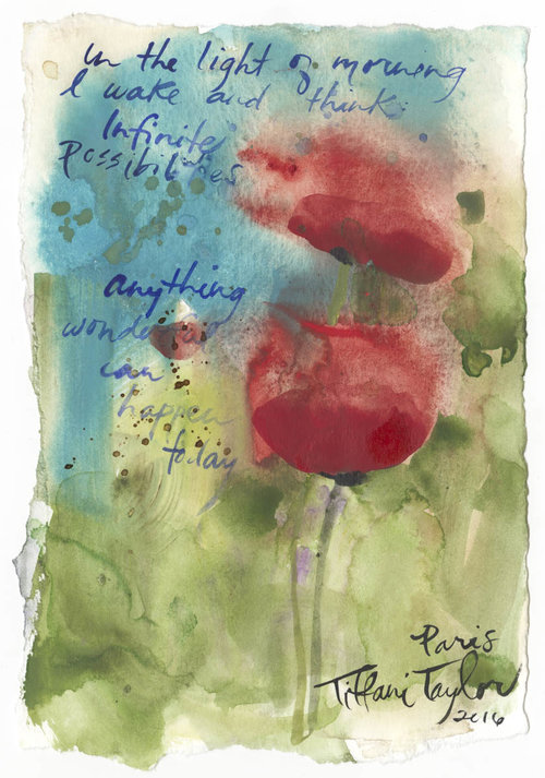 Red Poppies: Infinite Possibilities
