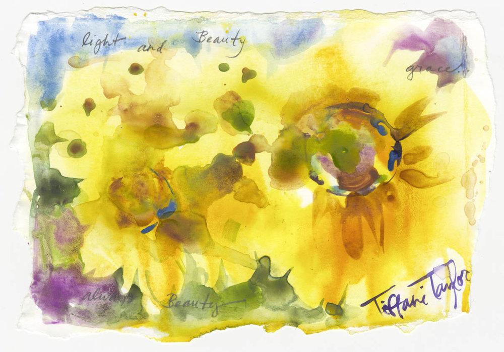 Sunflowers: Light and Beauty...