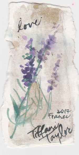 Lavender Study: Love