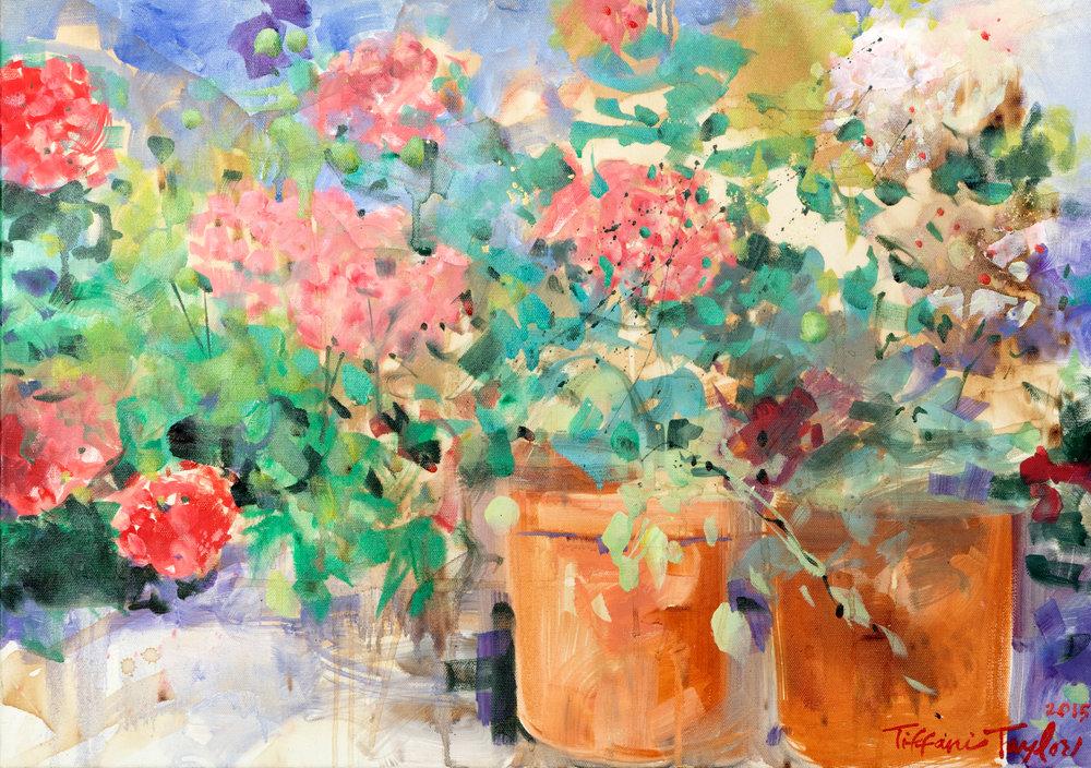 Hydrangeas in Provence: Light and Beauty