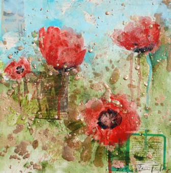 Red Poppy Blooms