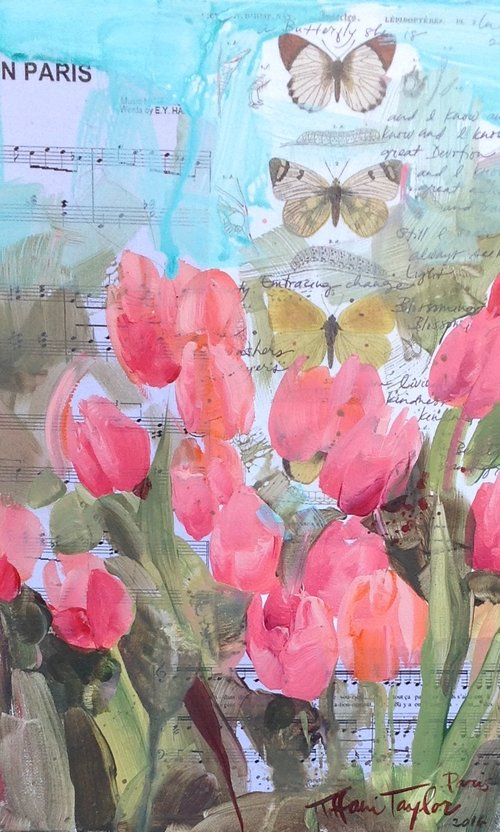 Pink Tulips, Butterflies...