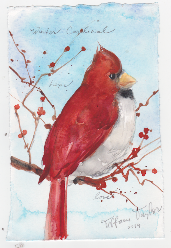 Winter Cardinal: Hope, Love...