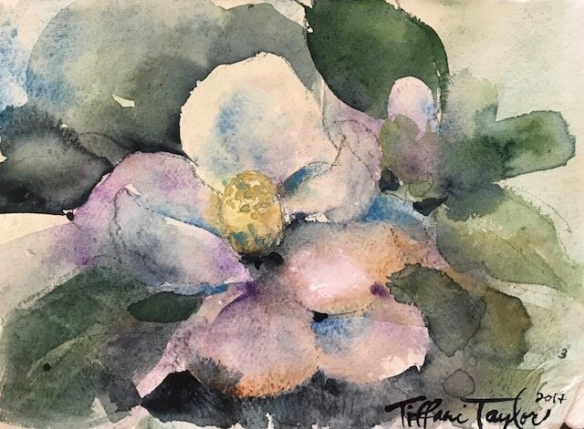 Magnolia Study 3
