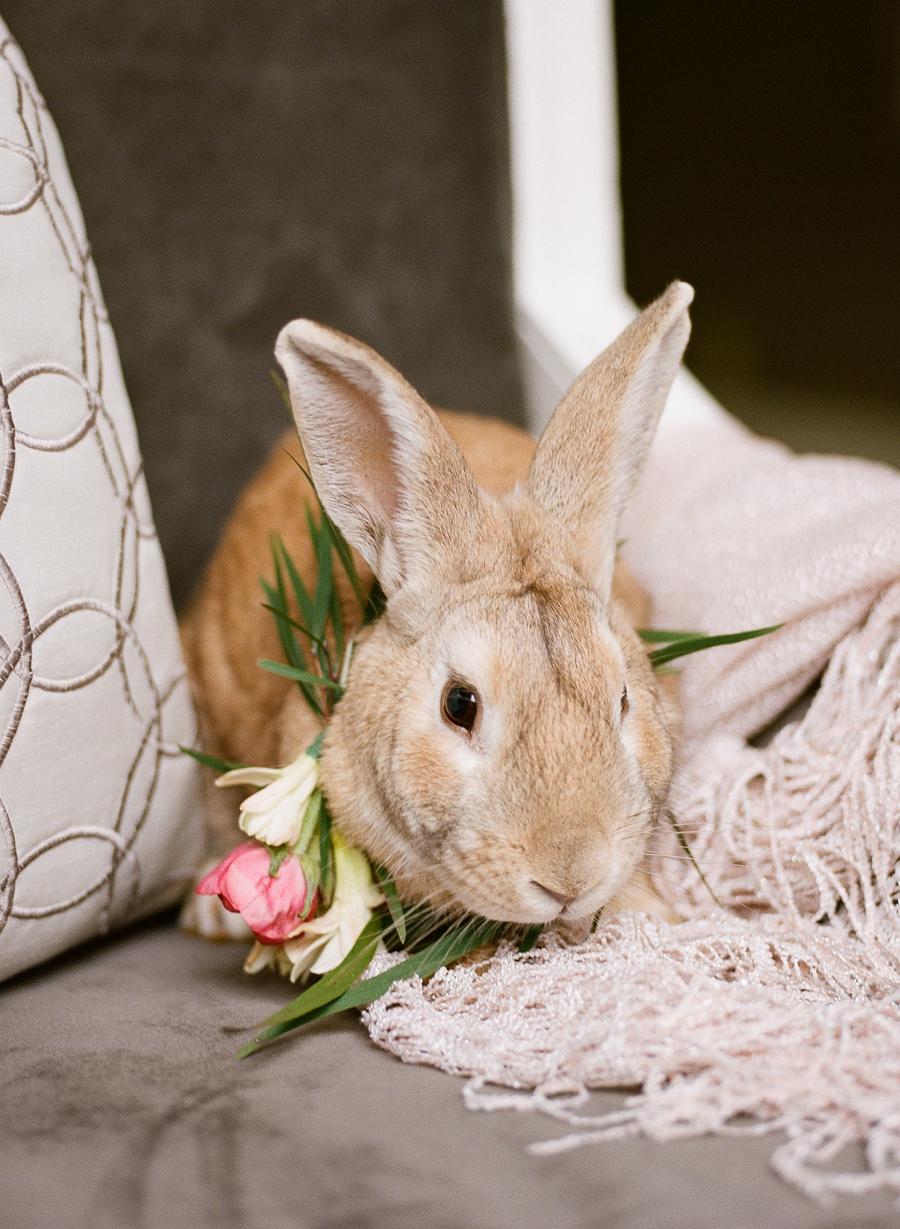 nashville-wedding-photography-inspiration-speckled-spring-easy-ivy-mansion-26.JPG