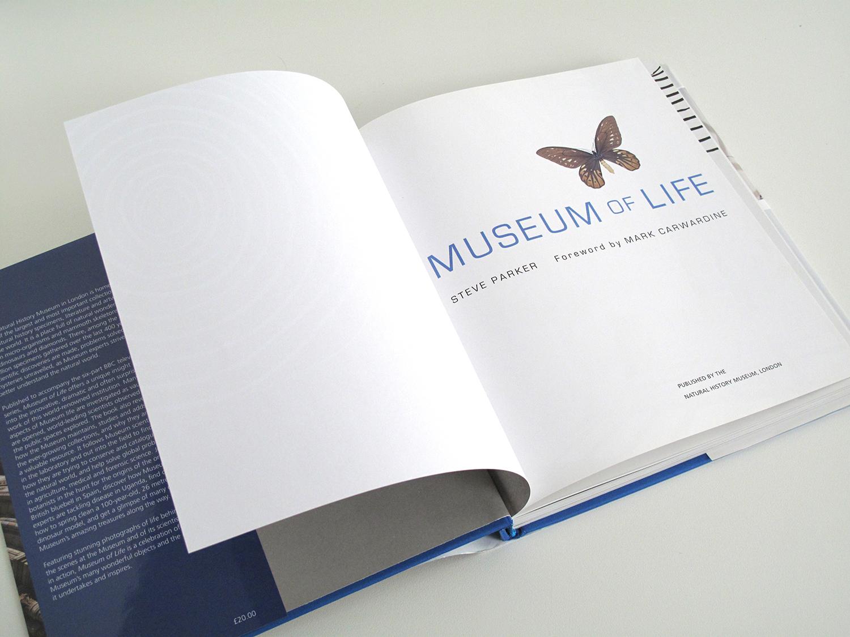 sqsp_MuseumLife_07.jpg