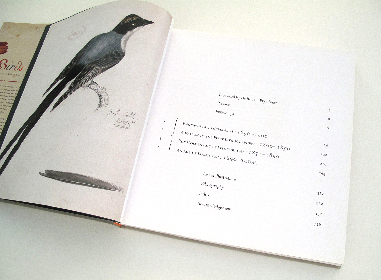 sqsp_birdsNHM_05.jpg
