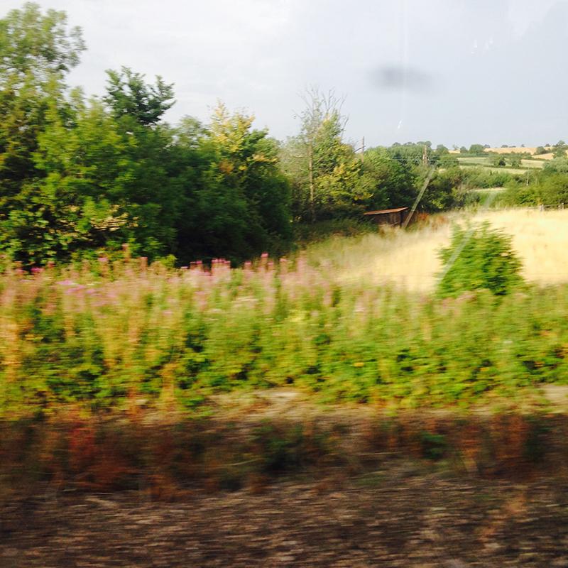 train trip david mackintosh_02.jpg