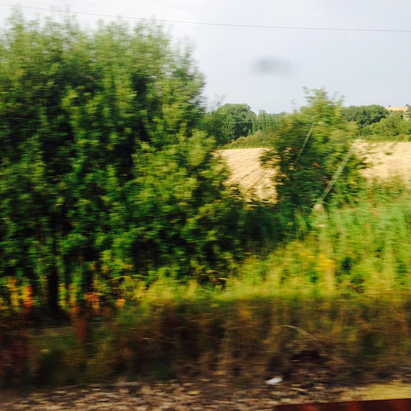 train trip david mackintosh_03.jpg
