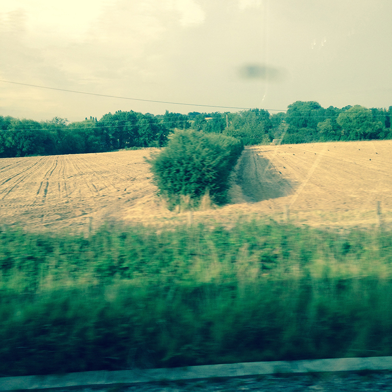 train trip david mackintosh_05.jpg