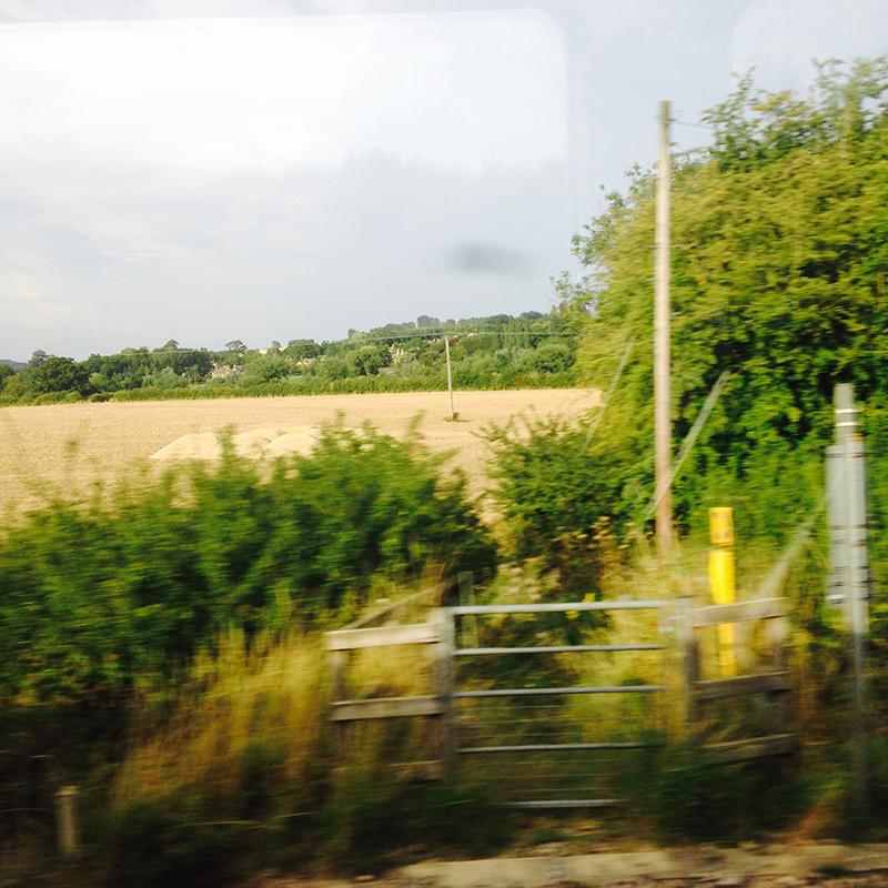 train trip david mackintosh_06.jpg