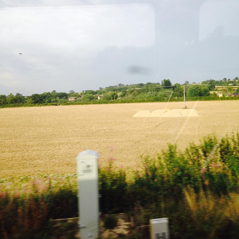 train trip david mackintosh_08.jpg