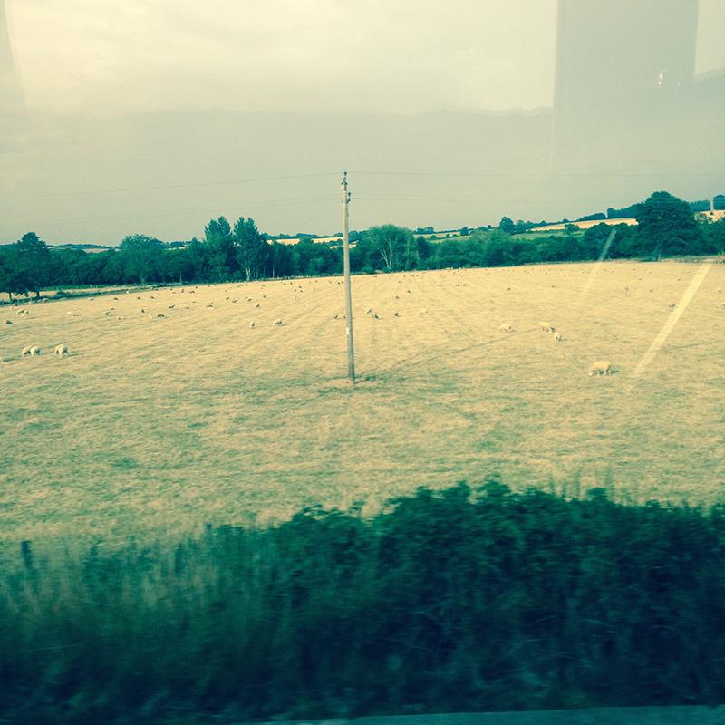 train trip david mackintosh_09.jpg