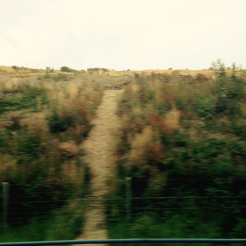 train trip david mackintosh_12.jpg