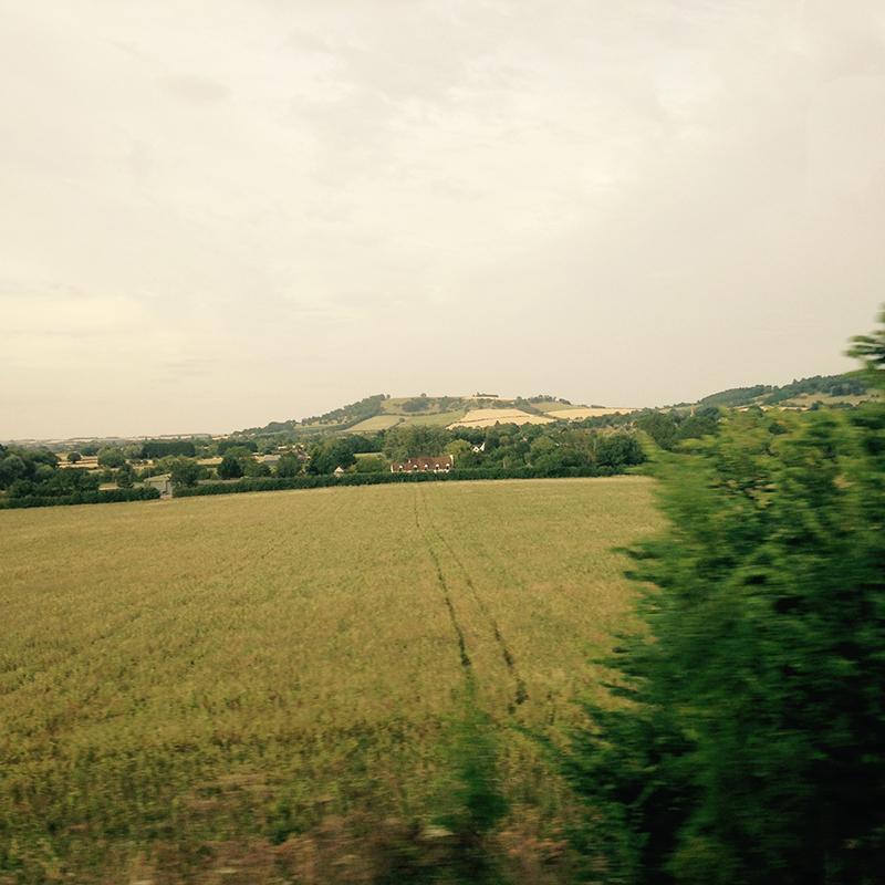 train trip david mackintosh_17.jpg