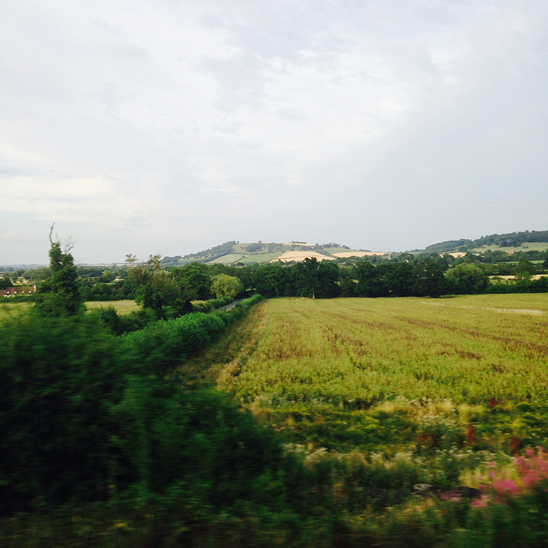 train trip david mackintosh_16.jpg