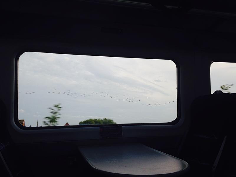 train trip david mackintosh_26.jpg