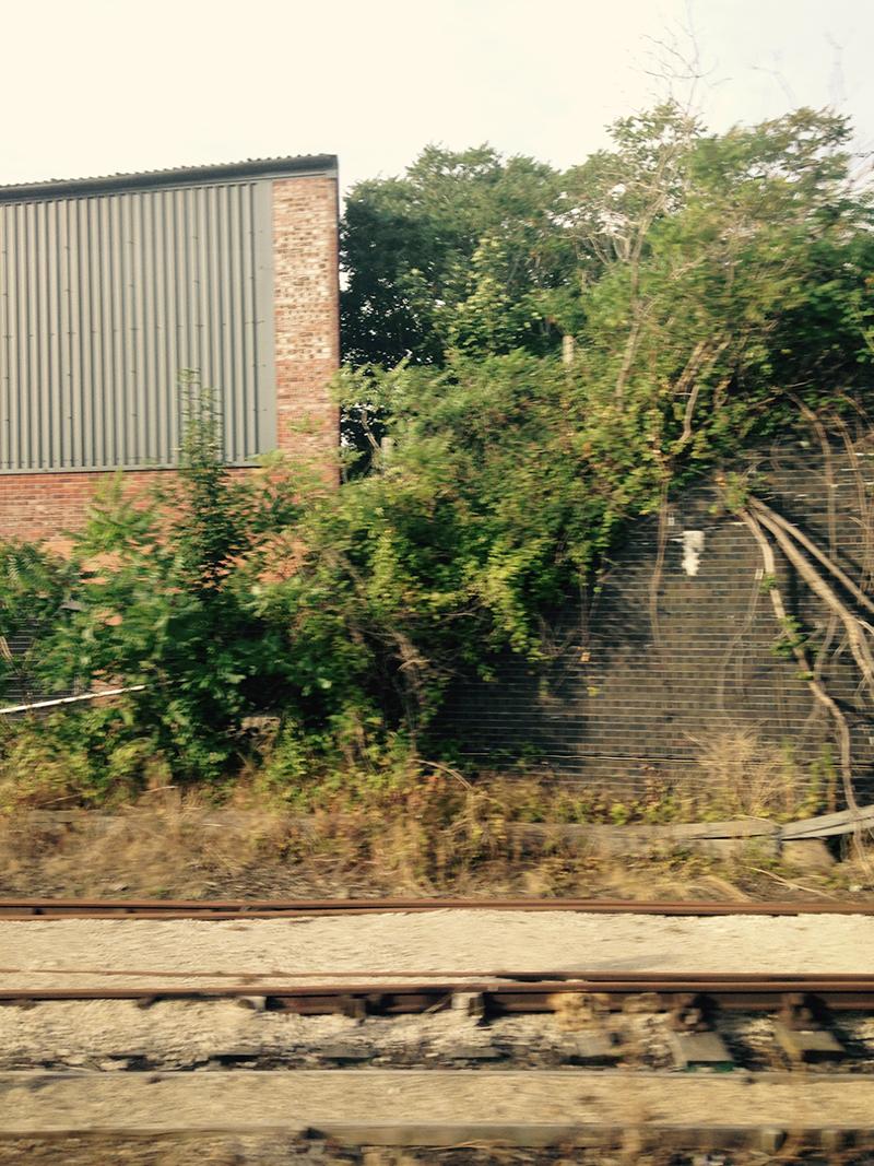 train trip david mackintosh_28.jpg
