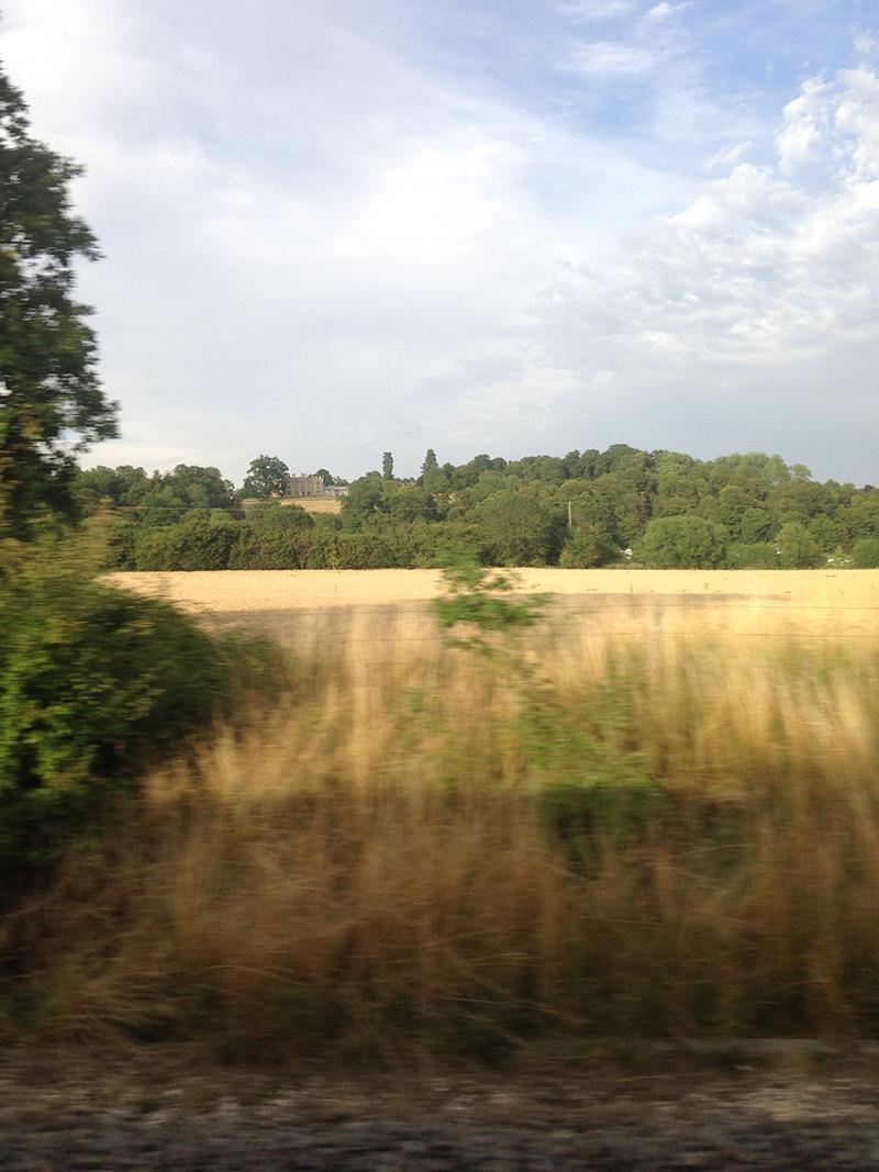 train trip david mackintosh_34.jpg