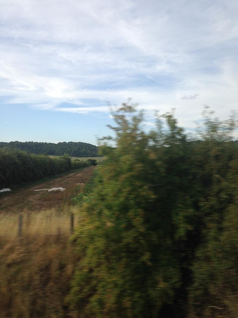 train trip david mackintosh_39.jpg