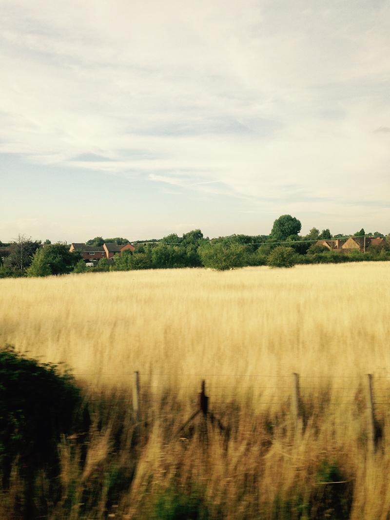 train trip david mackintosh_45.jpg