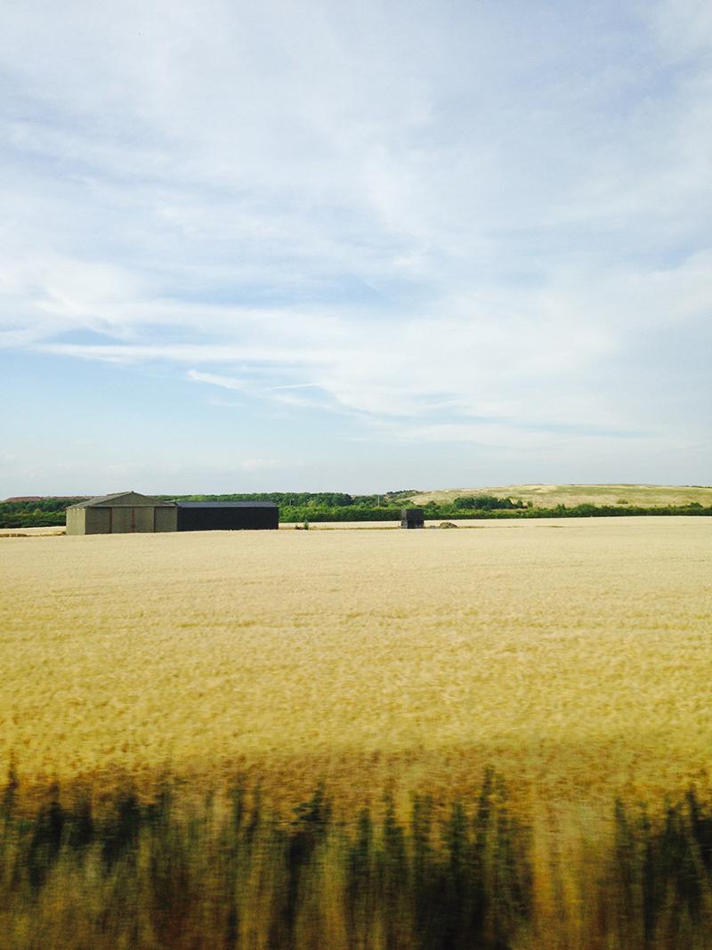 train trip david mackintosh_47.jpg