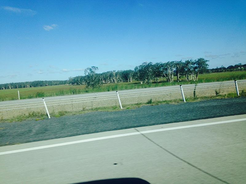 roadtrip11.jpg