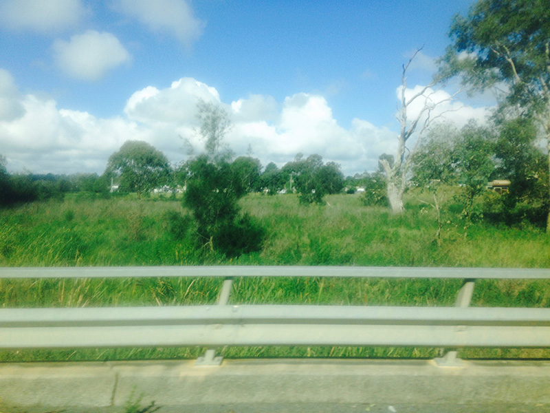 roadtrip14.jpg