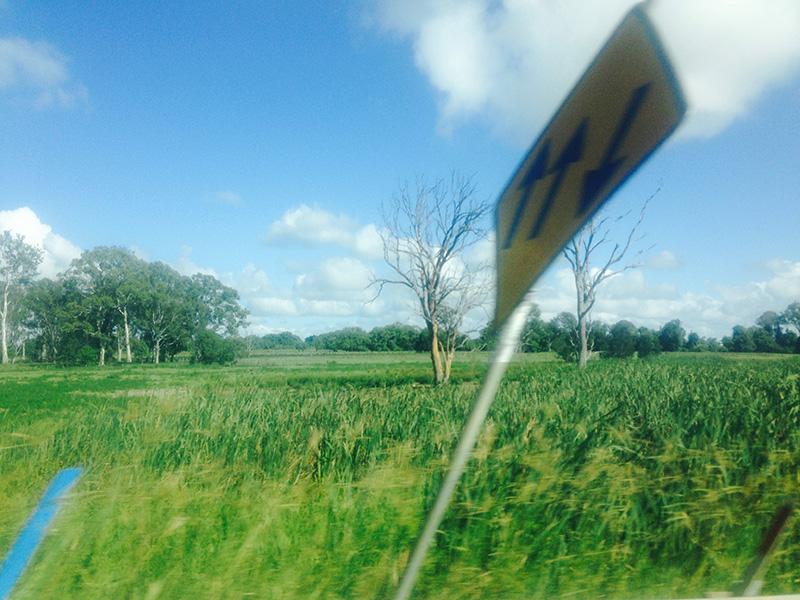 roadtrip16.jpg
