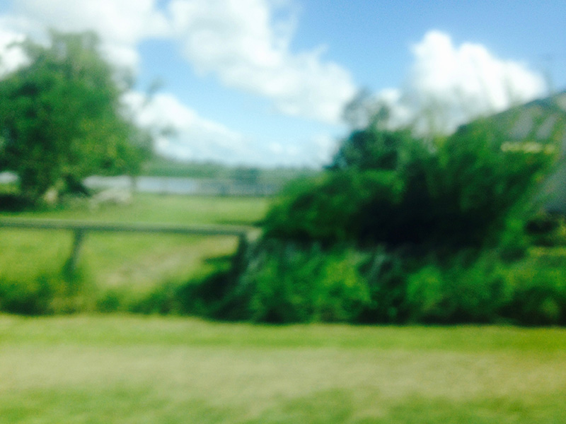 roadtrip21.jpg