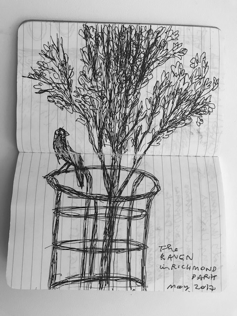 pisa_drawing_4.jpg