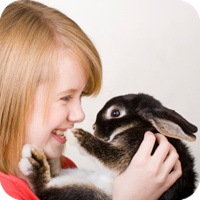 Rabbits make wonderful pets. They are fluffy and soft, respond well to handling, and can learn to use a litter box. There are even different breeds of rabbit!