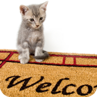 It may be stating the obvious, but always find out in advance if pets are welcome.
