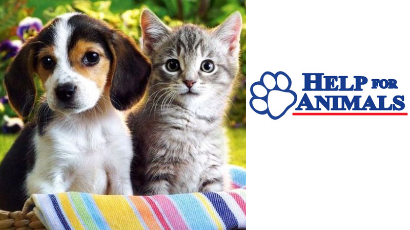 Help-for-Animals-Clinic_thumbnail-image.jpg